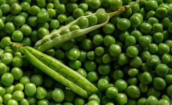 العناصر الغذائية في البازيلاء, السعرات الحرارية - الكربوهيدرات - العناصر الغذائية في البازيلاء