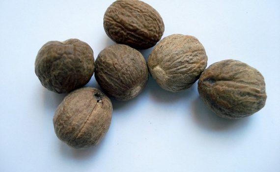 العناصر الغذائية في جوزة الطيب, السعرات الحرارية - الكربوهيدرات - العناصر الغذائية في جوزة الطيب