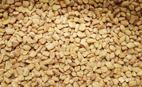 العناصر الغذائية في الحلبة, السعرات الحرارية - الكربوهيدرات - العناصر الغذائية في الحلبة