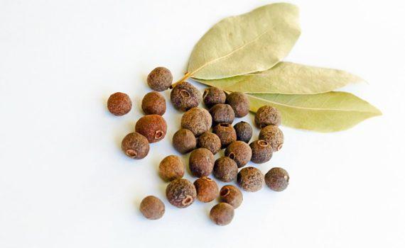 العناصر الغذائية في الفلفل الافرنجي, السعرات الحرارية - الكربوهيدرات - العناصر الغذائية في الفلفل الإفرنجي
