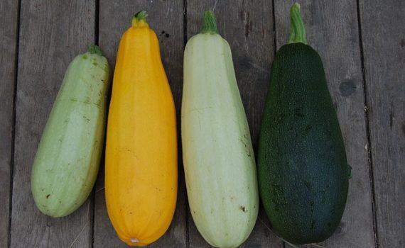 العناصر الغذائية في الكوسا, السعرات الحرارية - الكربوهيدرات - العناصر الغذائية في الكوسا
