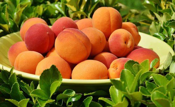 العناصر الغذائية في المشمش, السكريات - الكربوهيدرات - العناصر الغذائية في المشمش