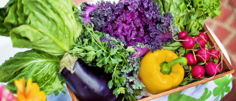 السعرات الحرارية والقيم والعناصر الغذائية في للطعام,, متوسط حاجة الجسم اليومية من المغذيات