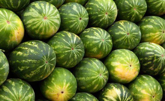 العناصر الغذائية في البطيخ, السعرات الحرارية - الكربوهيدرات - العناصر الغذائية في البطيخ