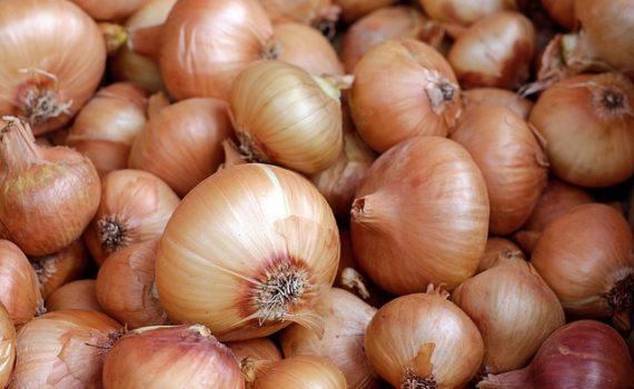 العناصر الغذائية في البصل المطهوّ, السعرات الحرارية - الكربوهيدرات - العناصر الغذائية في البصل المطهوّ