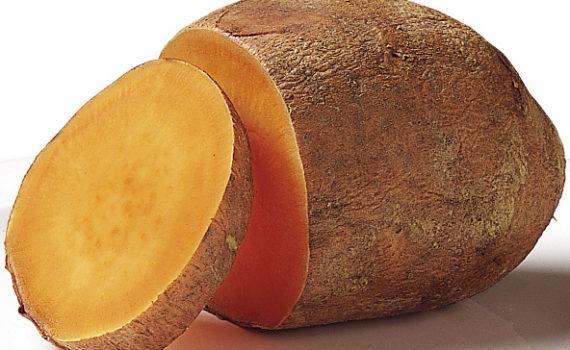 العناصر الغذائية في البطاطا الحلوة المطهوّة, السعرات الحرارية - الكربوهيدرات - العناصر الغذائية في البطاطا الحلوة المطهوّة